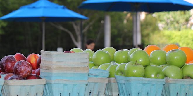 Farmers Market in Sunny Isles Beach