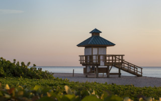 Lifeguard tower with green plants in the foreground on a deserted beach early in the morning