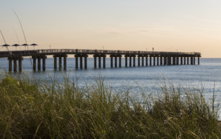 Newport Fishing Pier early in the morning with green long grasses in the foreground