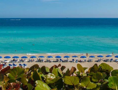 Sunny Isles Beach Miami Offers Discounted Rates, Money-Saving Packages for Family-Friendly Spring Break