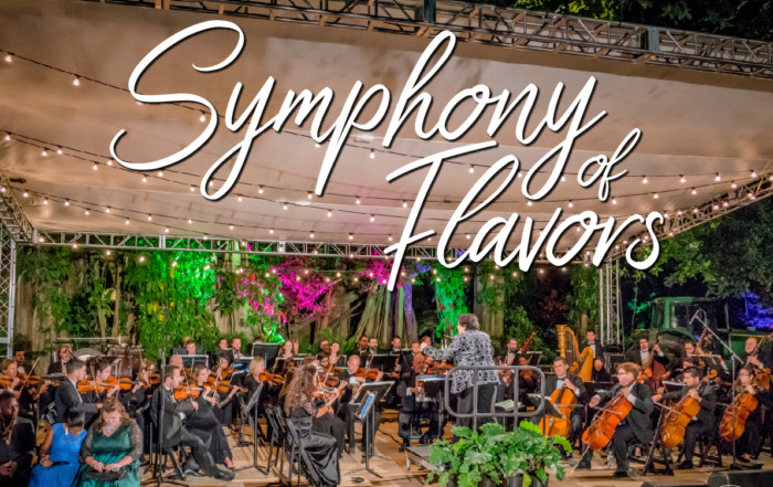 Symphony of Flavors: The South Florida Symphony Orchestra