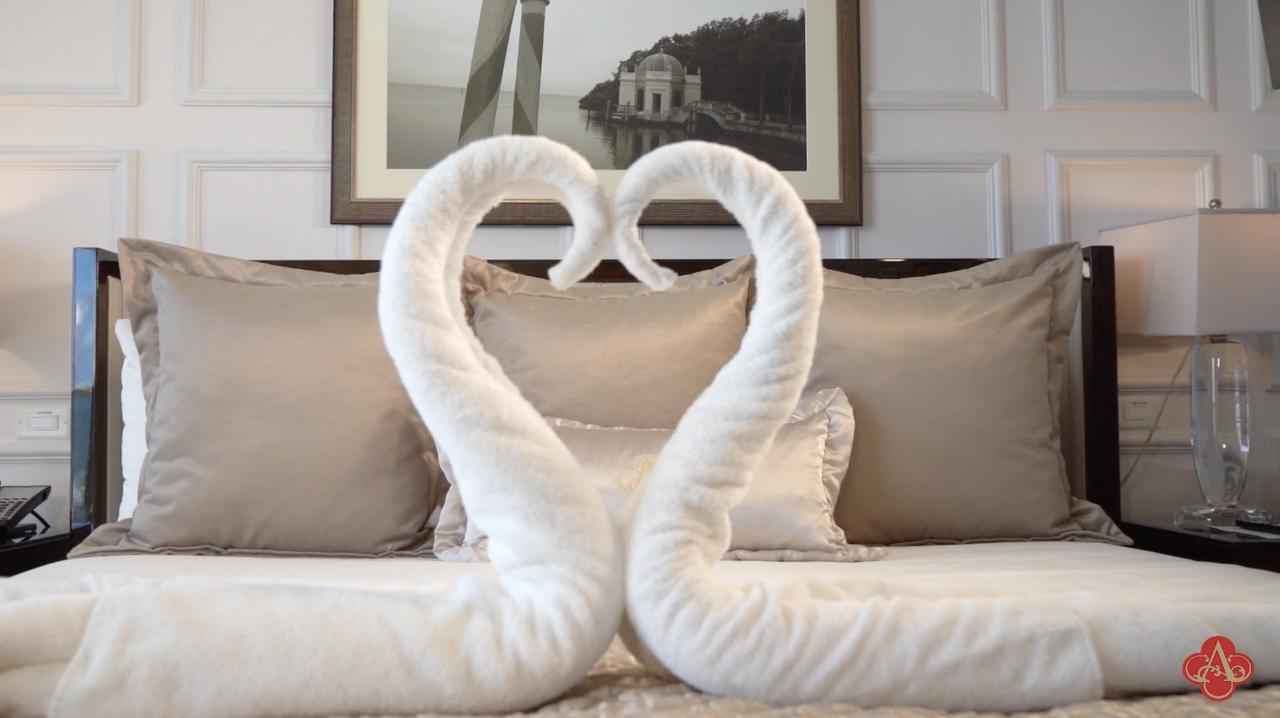 Swan Towel Art